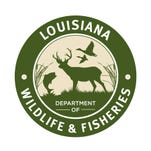 Some roads on the Dewey W. Willis Wildlife Management Area have been reopened to all traffic after flooding, according to the Louisiana Department of Wildlife and Fisheries.