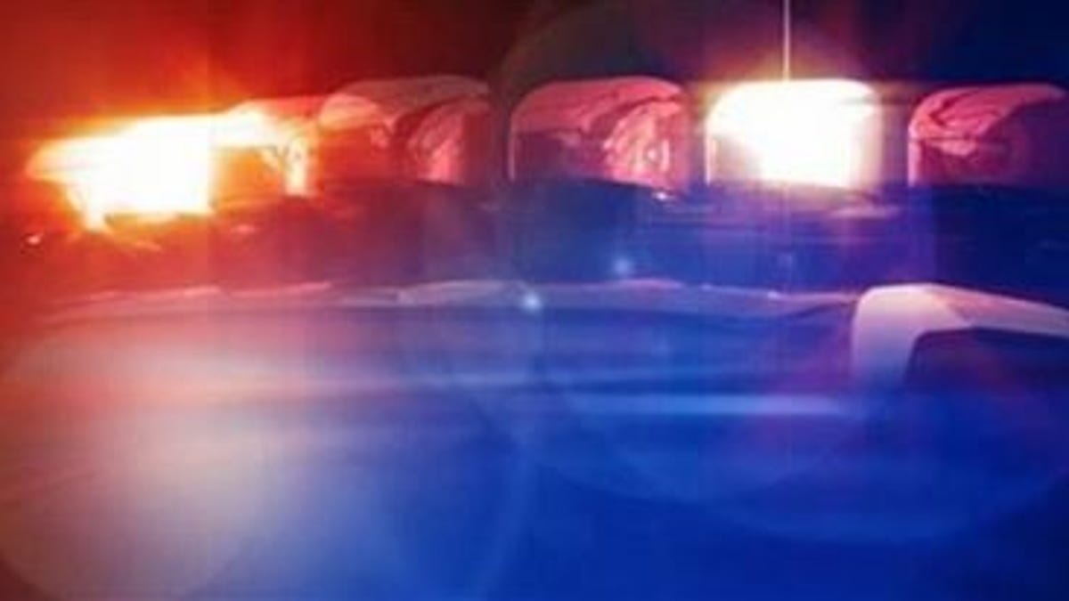 Cape Coral police investigating after woman found dead in car 2