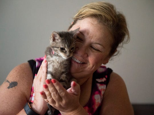 A kitten from Young-Williams cuddles with Julie Riley