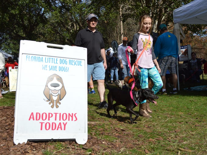 The 8th Annual Pookie's RescueFest in Maitland was