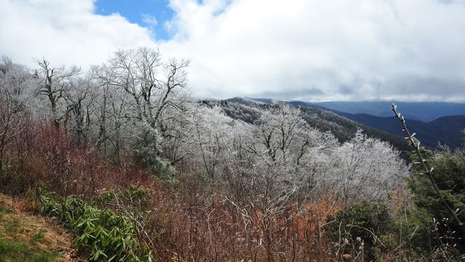 A freeze warning has been issued for WNC Monday night.