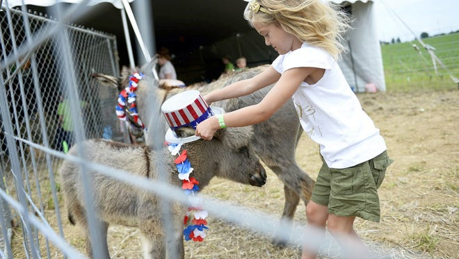 In this 2014 photo, Emily Kukura, 6, of Palmyra puts a hat on a donkey at the Down on the Farm Days at Patches Family Creamery in South Lebanon Township. Down on the Farm Days returns this weekend.