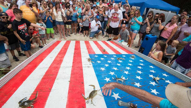 The 13th Annual Sons of AmVets Post 2 Crab Race in Millsboro.