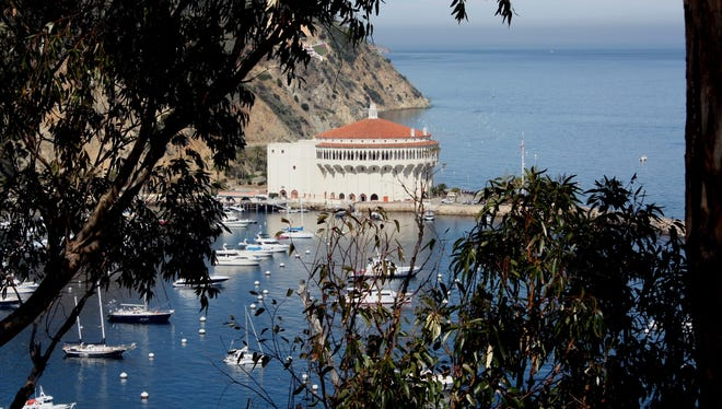 Casino Point in Catalina Island, Calif., offers easy walk-in diving and abundant sea life.