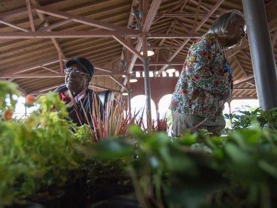 Barbara Bland, Royal Oak, and Sylvia Sanders, Detroit, examine plants at Eastern Market in Detroit on Tuesday, June 5, 2018.