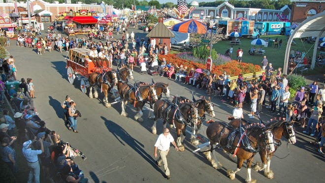 Clydesdale horses at the Big E