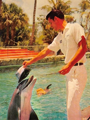 Jack Scarpuzzi would train the dolphins as they performed at Cape Coral Gardens.