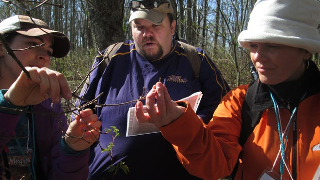 Volunteers collect tree phenology data in the Great Smoky Mountains National Park. The park is seeking volunteers to adopt-a-plot this spring.