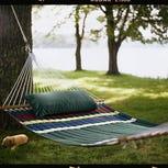 U.P. school: Quit hanging hammocks on trees or pay $25 fine