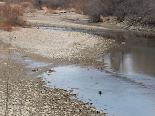 The stream flow on the Animas River through Farmington is running at less than 10 percent of normal for this time of year.