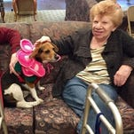 PHOTOS: PawFest at Spring Hills Assisted Living in Morristown