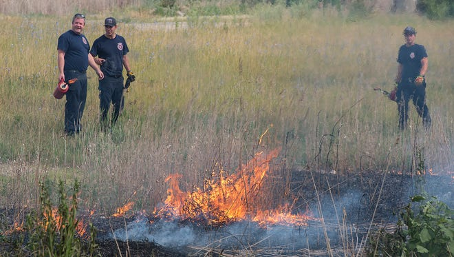 Livonia firefighters conduct a controlled burn of invasive species of plants on city property on Glendale Street east of Farmington Road.