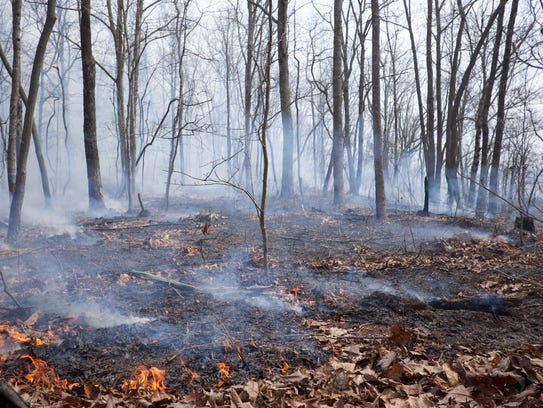 A prescribed fire managed by TVA, TWRA and Tennessee