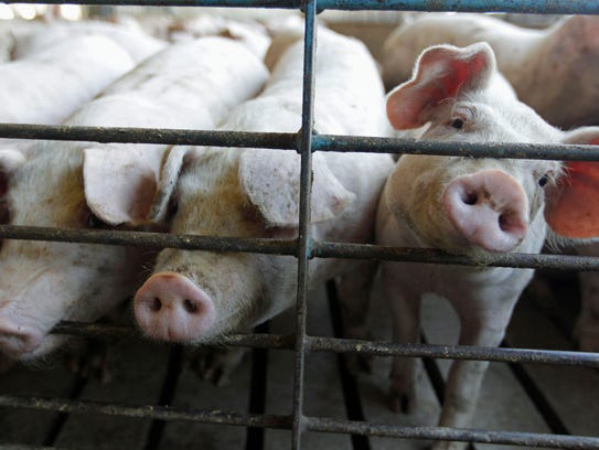 Farming and livestock groups tell The Associated Press