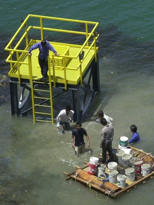Department of Agriculture workers construct a fishing platform in Talofofo Bay in 2002. Gov. Eddie Calvo recently signed a contract to have a much larger fishing platform built along the ripraps facing the open ocean at the Paseo de Susana.