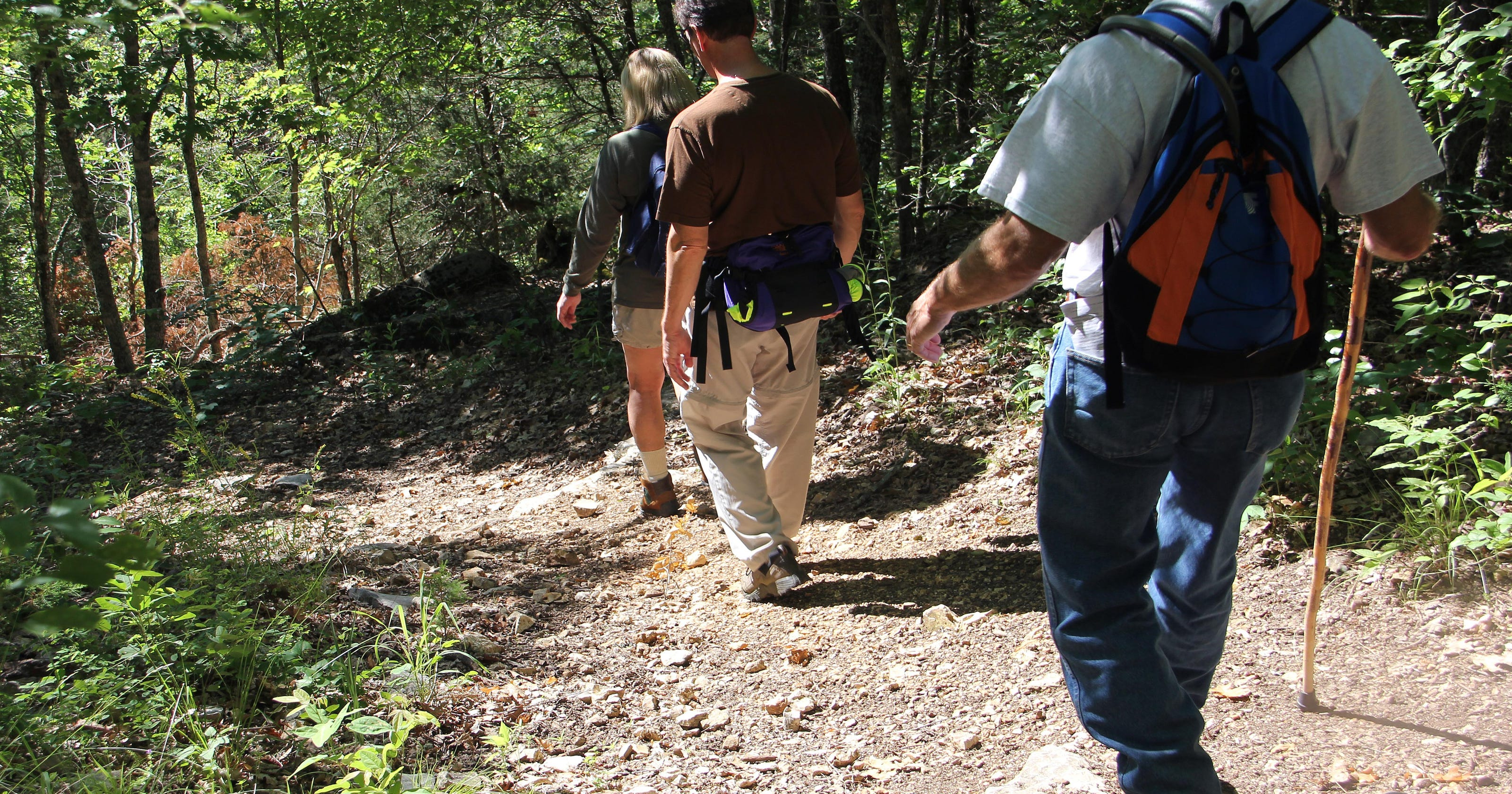 National Trails Day: Here are 5 great hikes close to Springfield