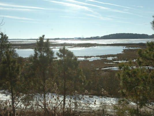 -WILBrd_01-09-2014_Daily_1_B002~~2014~01~08~IMG_-011109-wetlands-bh8_1_1_UR6.jpg