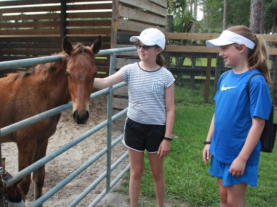 Amanda and Hannah Smith toured the ERAF property and enjoyed meeting all of the horses and feeding them treats. A highlight was meeting Shay, a four-month-old foal born to one of the rescued horses cared for by ERAF.