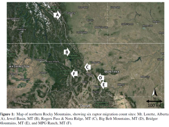 Locations where migrating raptors are counted.