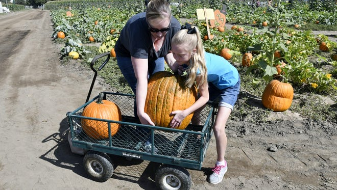 Amanda Dunn and her daughter Taylor Dunn, 9, work together to load a pumpkin into a wagon at Vossler Farms opening day on Saturday, September 29, 2018.