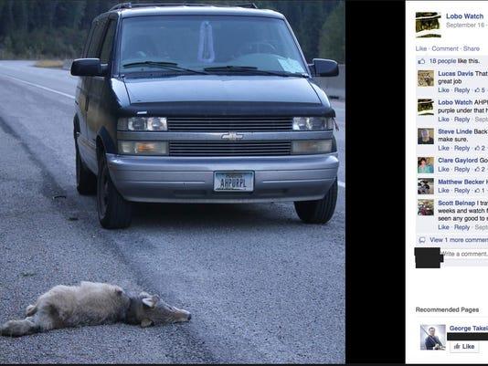 -wolf slaying 4.jpg_20140919.jpg