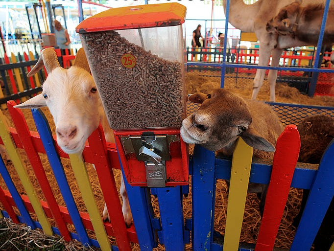 The Dutchess County Fair opened on Tuesday in Rhinbeck.