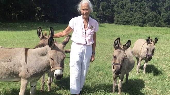 Lynda Beam of Vernonburg with one of of her donkeys.