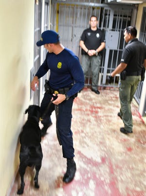A Customs K-9 Department officer conducts a search of post five on Sept. 19, 2017.