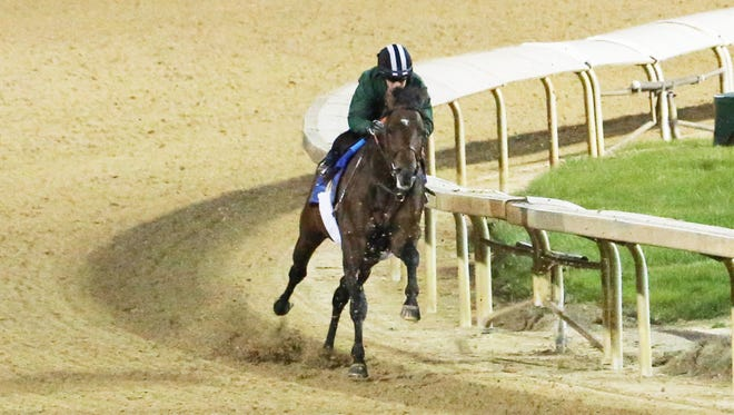 Lone Sailor breezes on April 19 at  Churchill Downs.