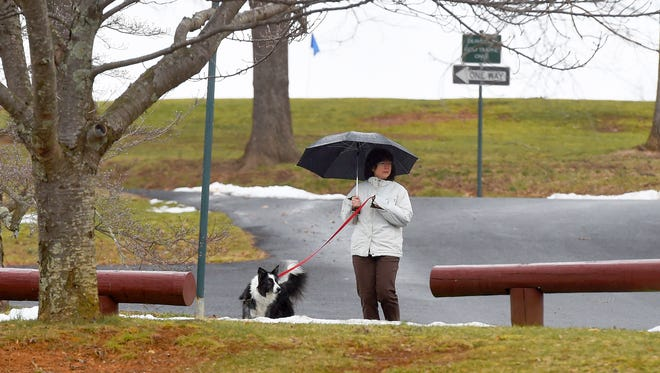 A light rain falls as a dog and the person with it cross 116th Regimental Road at Gypsy Hill Park on Monday, Feb. 1, 2016.