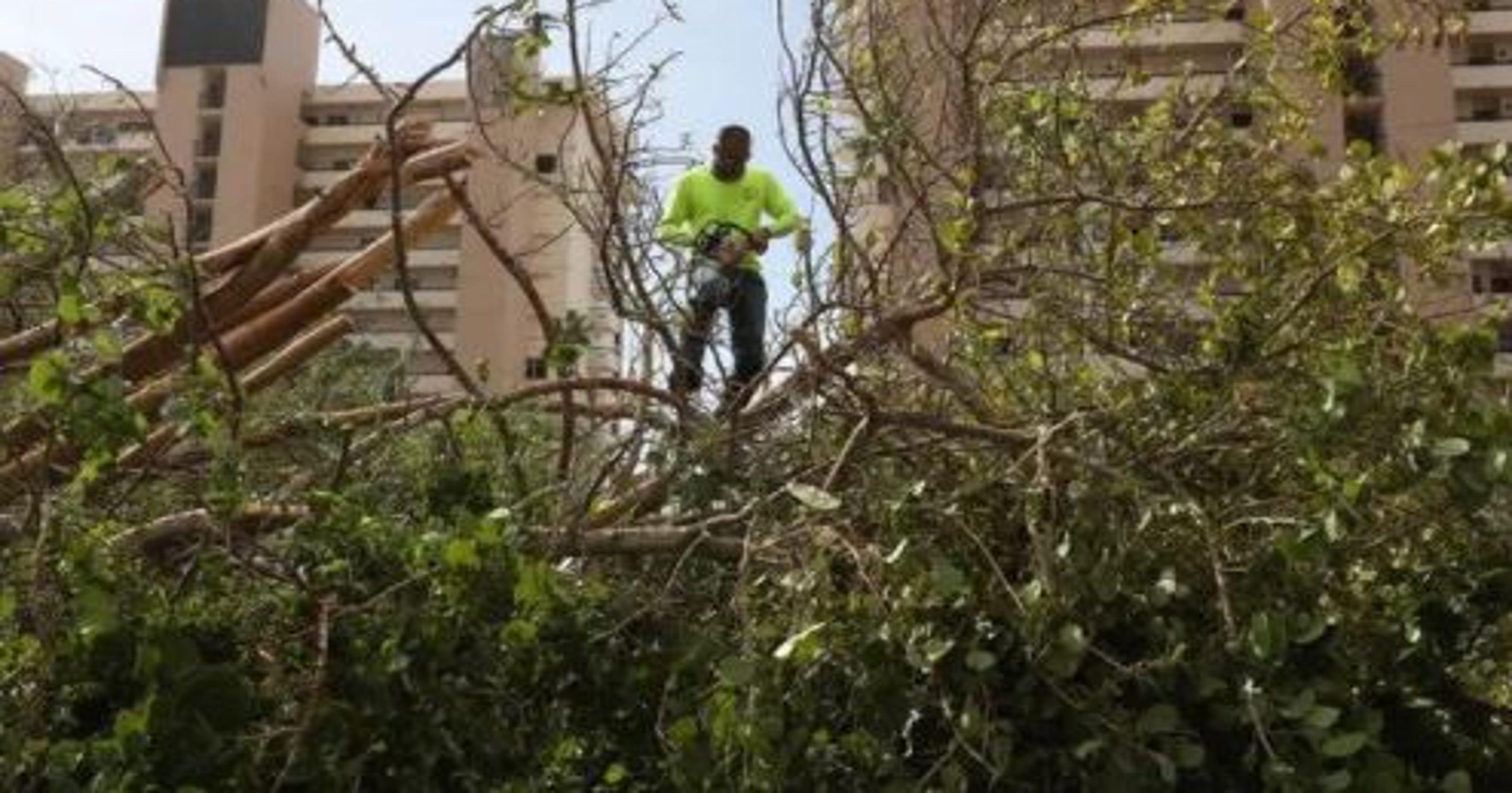 Second Hurricane Irma debris will cost Lee County $39 million