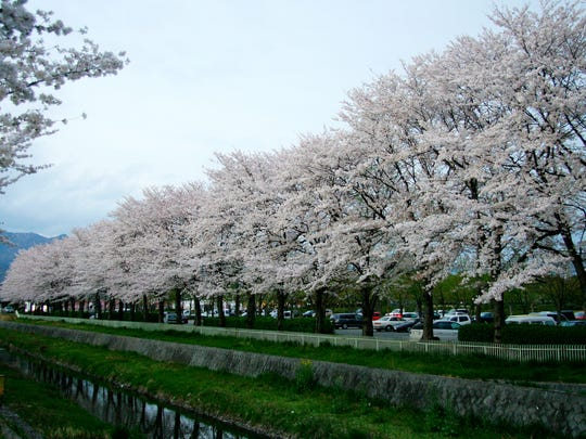 Kose Sports Park in Kofu City, Yamanashi, Japan features