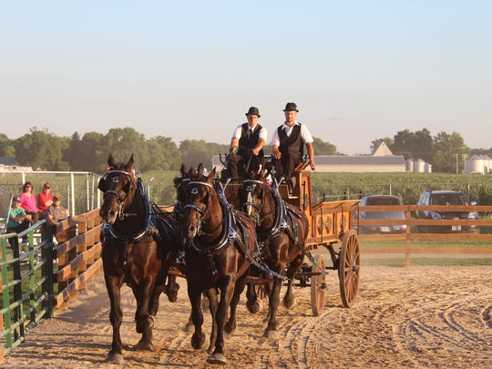 Michael Cyr leads a four-horse hitch around the arena.