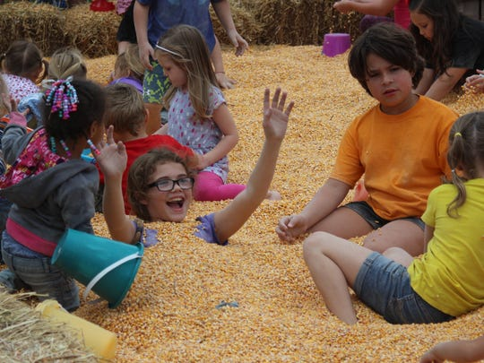 Children enjoyed playing in the corn crib at Lawrence Orchards' Applefest. This is the 31st year the orchard has hosted the festival.
