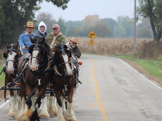 Members of the Jefferson County Draft Horse Association take a leisurely ride on a rural road as part of their Oct. 15 club social.
