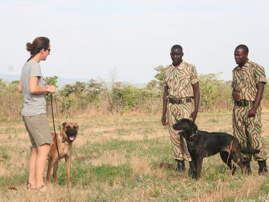 Vicka, a black lab from Nevada, poses with Zambian