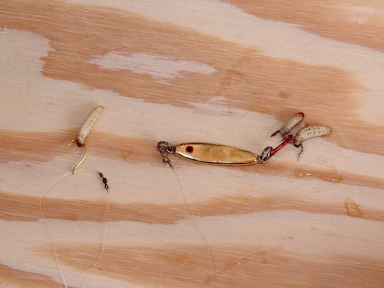 "A popular rig used by anglers to catch lake whitefish through the ice features a ""slider"" hook and wax worm about 18 inches above a jigging spoon. The hook is allowed to move freely on the line above a small barrel swivel."
