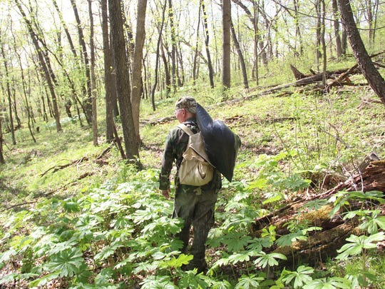 Tim Eisele of Madison walks out of the spring woods with a bag of garlic mustard. Eisele pulled the invasive plant on a property he and his wife Linda own in Crawford County.