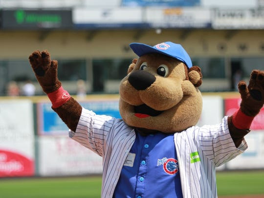 Cubbie Bear is back for another year of Iowa Cubs action.