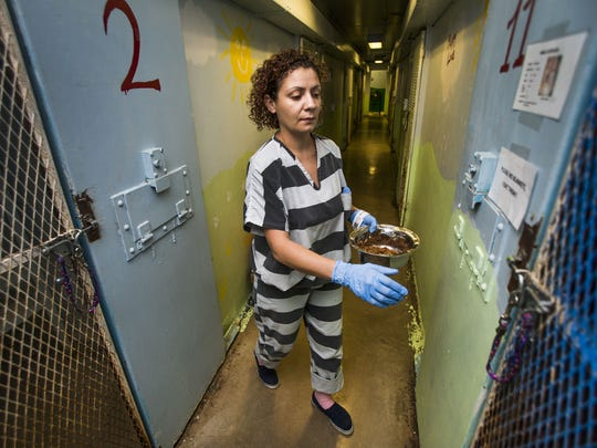 Inmate Esmeralda Patino volunteers to work with the dogs and cats in the Maricopa Animal Safe Haven (MASH) Unit in Phoenix.  Abused and neglected animals that have been confiscated are housed in the unit and many inmates in the jail volunteer to care for them. She brings food to the dogs in their cells.