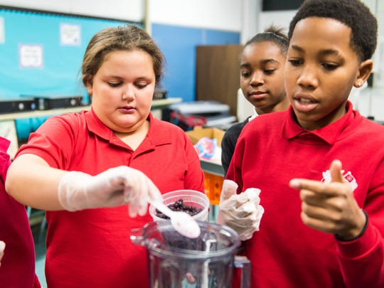 Durand students create healthy smoothies as alternatives