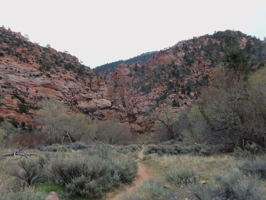 The entrance to Spring Creek Canyon slot canyon section.