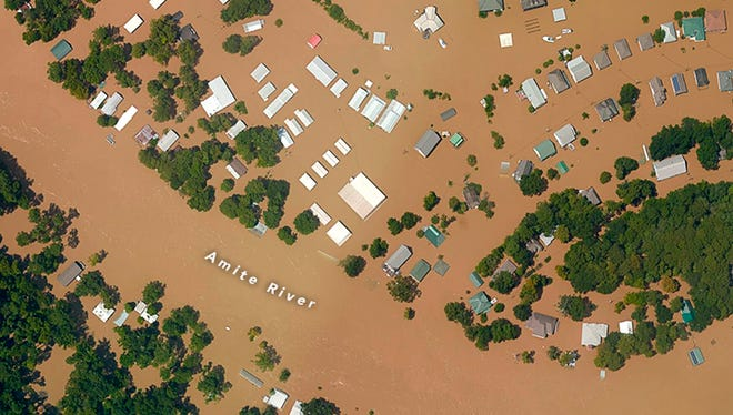 This photograph was taken with NASA's Trimble Digital Sensor System (DSS), which was flown on an aerial photography mission conducted by the NOAA Remote Sensing Division. It shows flooded areas in Port Vincent, along a segment of the Amite River southeast of Baton Rouge.