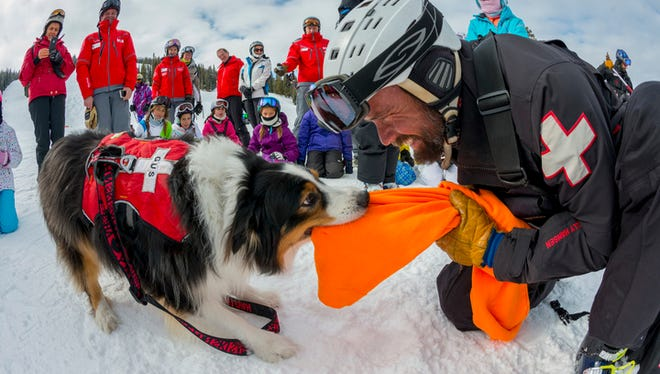 Aspen Mountain hosts a different educational event each day during its safety week from Jan. 26-31, including avalanche dog demonstrations.