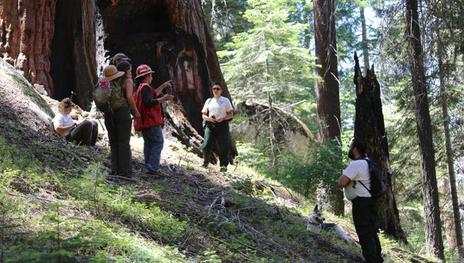 The Bureau of Land Management team conducts a survey of the Case Mountain Area.