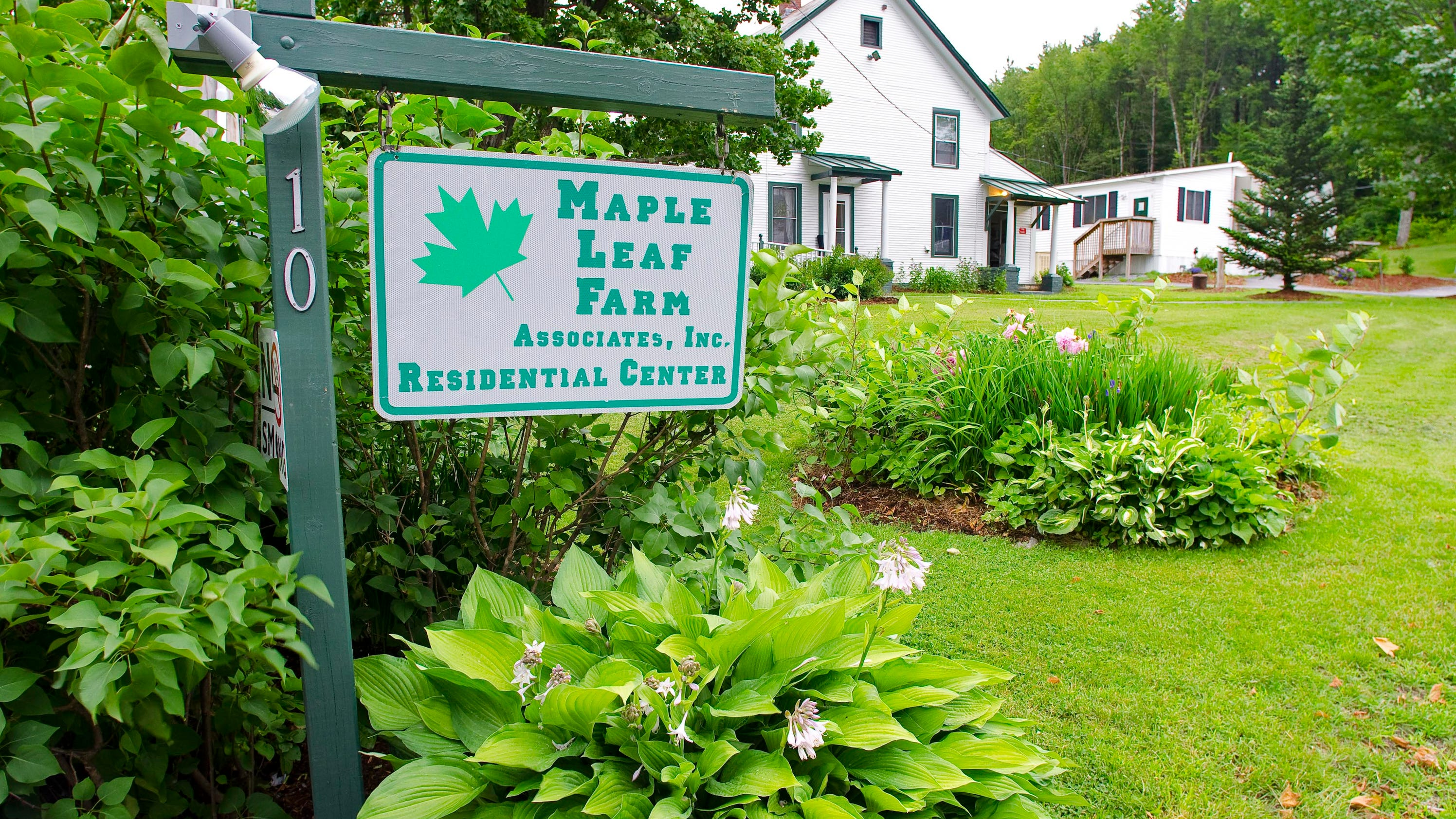 We welcome you to Maple Leaf Farms for a pleasurable shopping experience. The Country store is a Rustic Retreat that is filled with unique Decor gifts for indoor and outdoor. Relax to our country music as you stroll through our Nursery full of conifers, deciduous, and ornamental trees. In addition, we grow Acres of trees and shrubs.
