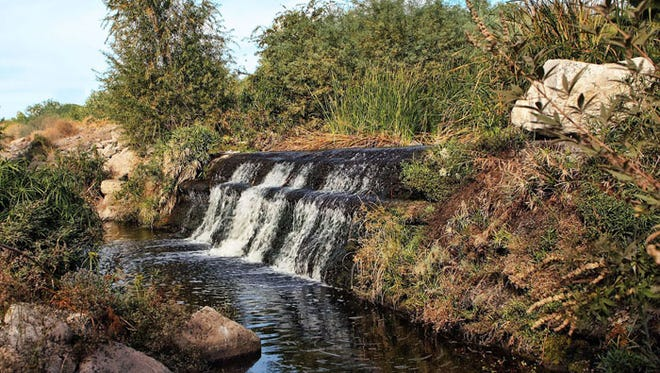 Rio Salado Habitat -- the waterfall was off the main path right in the center of Phoenix.
