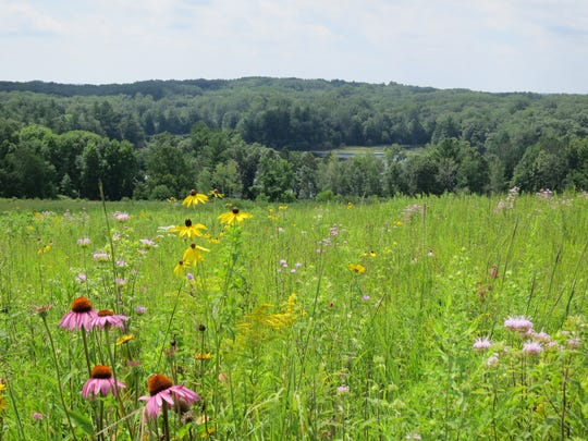 Chippewa Moraine State Recreation Area is full of changes in terrain.