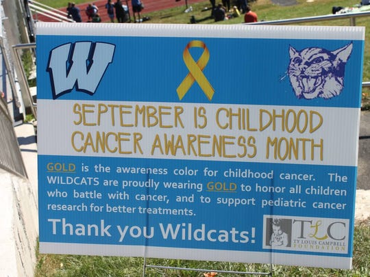 A poster advertising the Wildcats Sports Day charity event to raise money for childhood cancer.