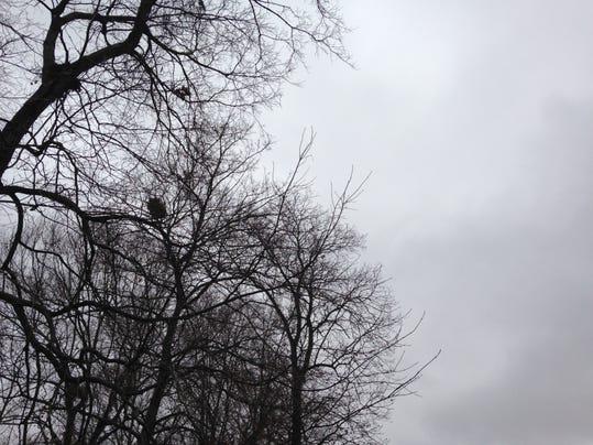 Weather 001.JPG